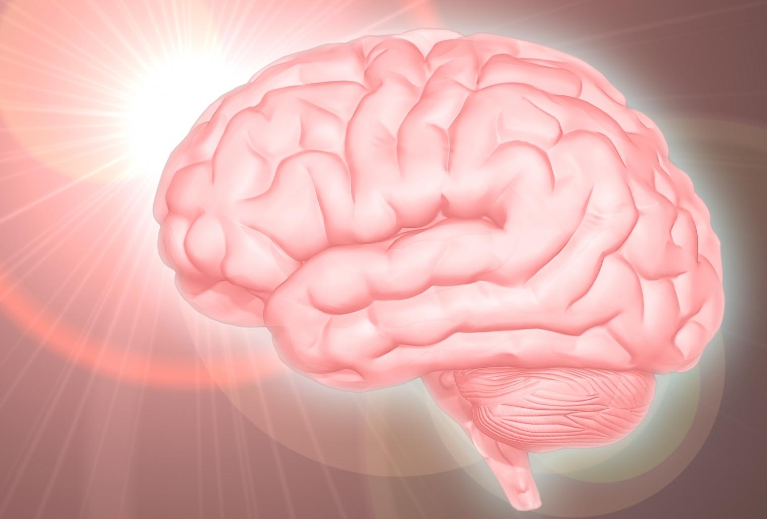 高額情報商材・知識共有プラットフォーム「Brain(ブレインマーケット)」の詐欺被害の返金方法・手順・相談窓口【最終手段は弁護士・司法書士】